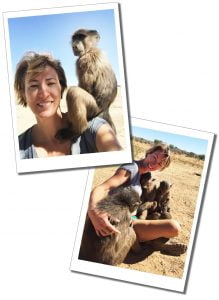SueWhereWhyWhat and young Baboons, N/a'ankuse, Namibia, Africa
