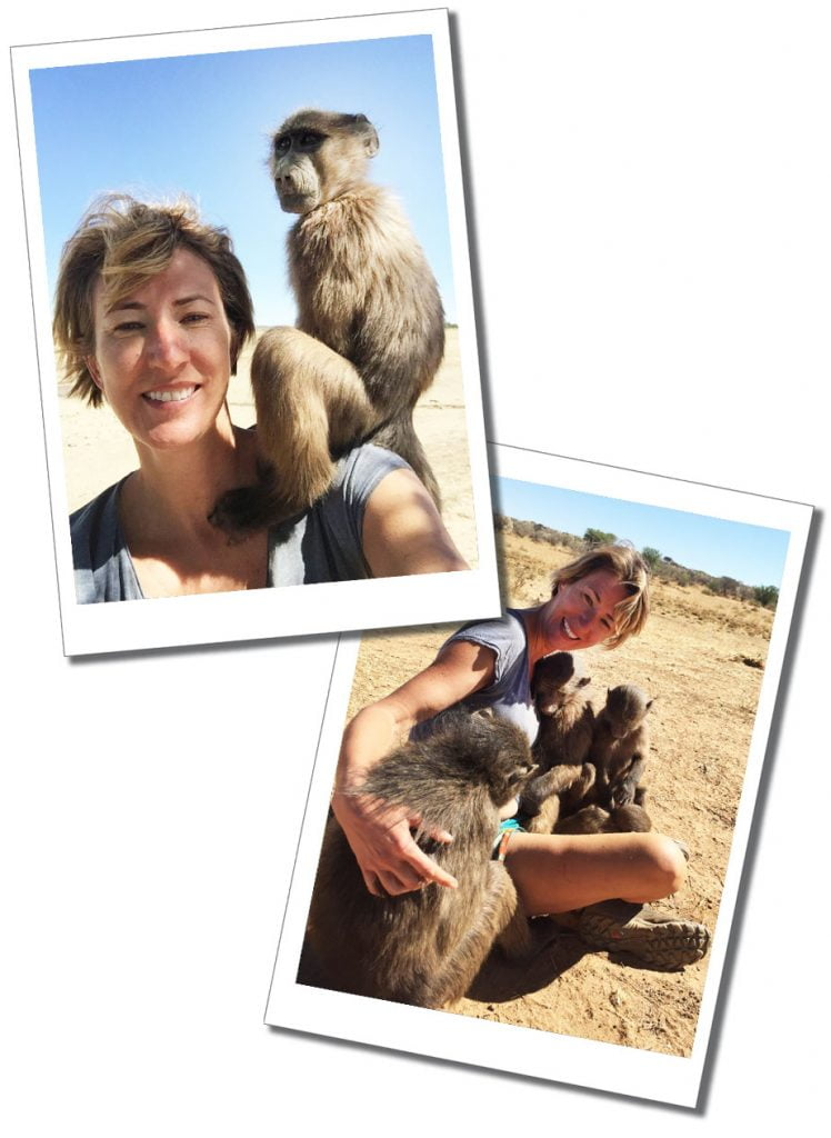 SueWhereWhyWhat and young Baboons, N/a'ankuse, Namibia, Africa - Travel For Singles Over 40