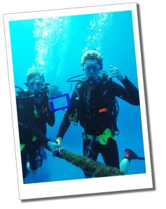 SueWhereWhyWhat Scuba diving off the Great Barrier Reef in Australia