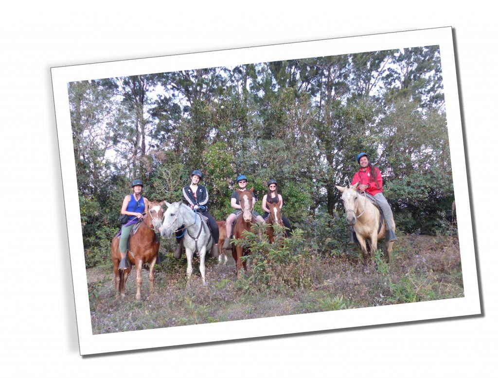 SueWhereWhyWhat Horse Riding in Monteverde, Costa Rica
