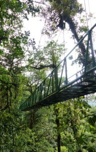 The Hanging Bridges in the forest in Costa Rica