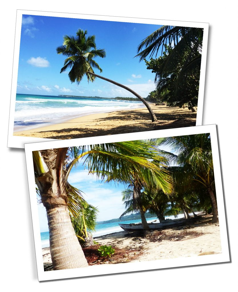"""The beautiful palm tree lined Las Terrenas Beaches. The """"most beautiful beach in DR"""", Playa Rincon."""