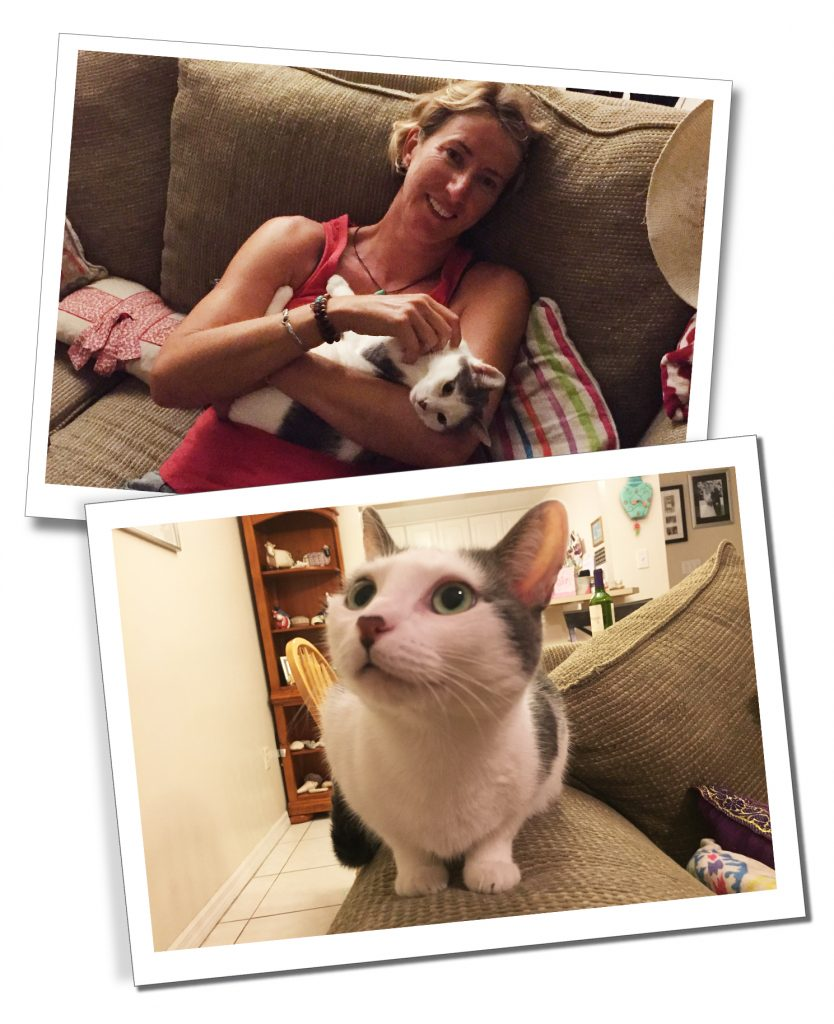 SueWhereWhyWhat & Ivy the Cat at her home while Housesitting in Grand Cayman