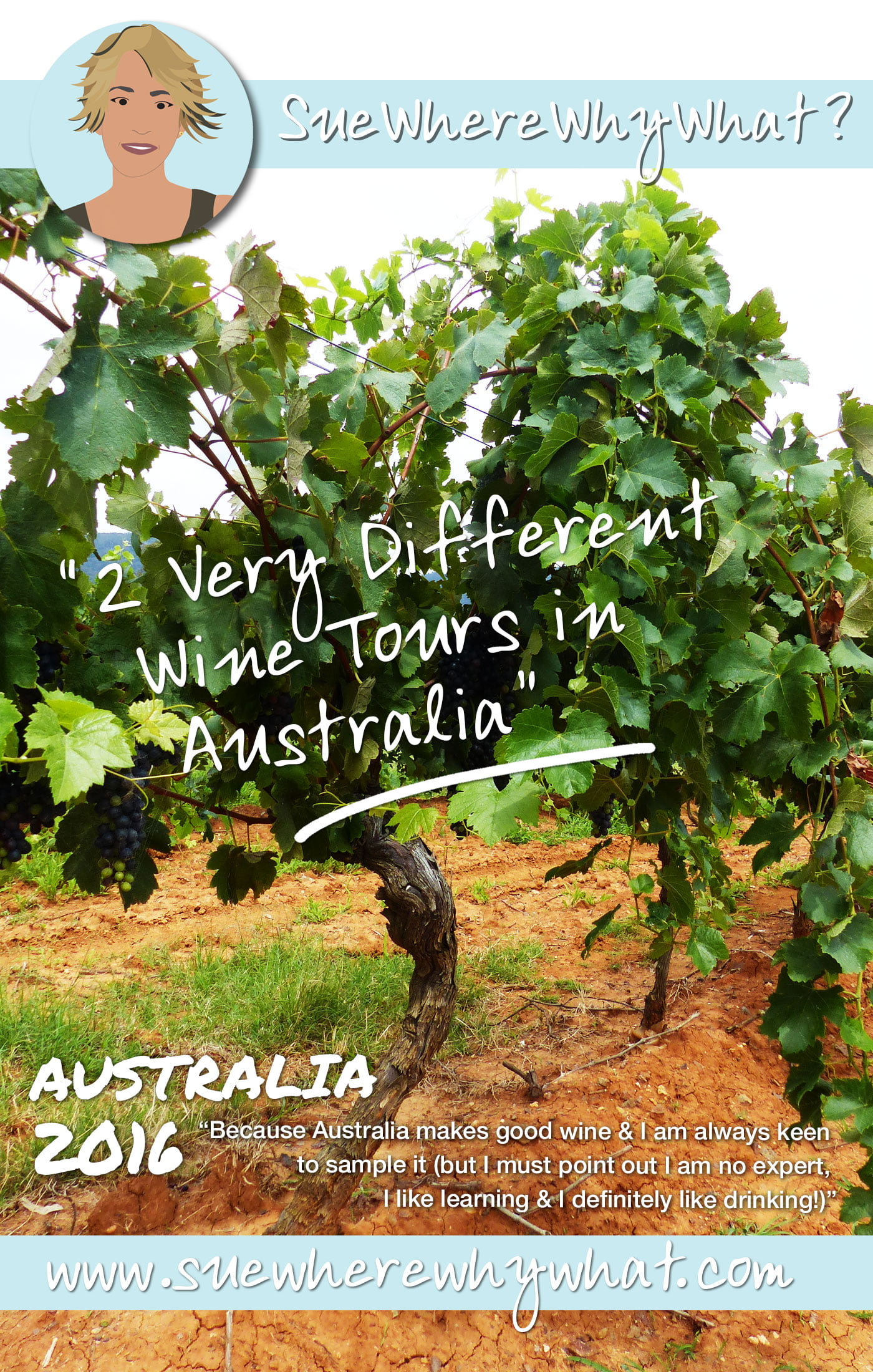 2 Different Wine Tasting Tours in Australia