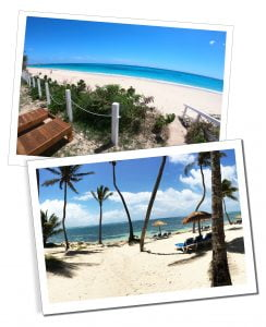 The beautiful golden sand, palm trees & parasols on the baking sunny beaches of the Caribbean