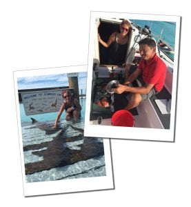 Suewherewhywhat and sharks in Compass Cay, Bahamas, Best of the Bahamas