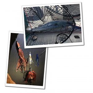 A Fish in a net & fishing tackle, Best of the Bahamas