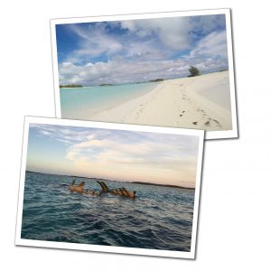 Beach and shipwreck, Normans Cay, Bahamas, Best of the Bahamas