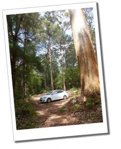 Hiking as a solo female. White car parked in the woods, Bluff Knoll, Australia.
