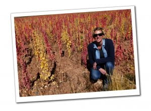 SueWhereWhyWhat crouches in sunglasses in a field of yellow and red Quinoa outside La Paz, Bolivia