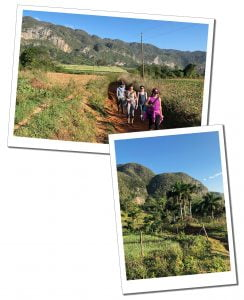 Women hiking in the sunshine along a path between the fields of Viñales, Cuba