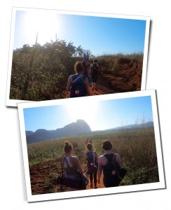 Woman hiking along a path between farmers fields, Viñales, Cuba