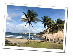 What To Do In Dominica – 21 Amazing Reasons To Visit The 'Nature Island' Of The Caribbean, Dominica beach