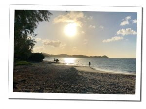 Antigua Beach, with horses at Sunset, 20 Best Things To Do In Antigua - A Local Perspective