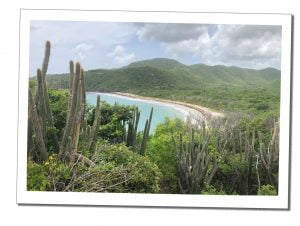 Secret Beach, Antigua, 20 Best Things To Do In Antigua - A Local Perspective
