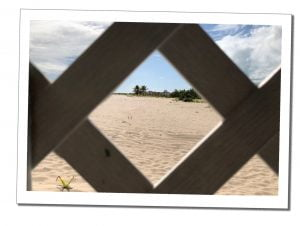 Deserted ruined buildings on the beach, A Day Trip To Barbuda – Reasons Not To Miss