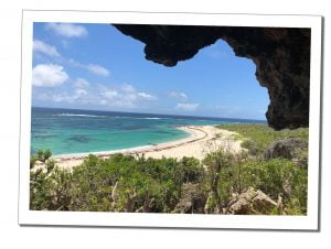 Barbuda Beach, Caribbean, 20 Best Things To Do In Antigua - A Local Perspective