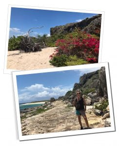 SWWW with Two Foot Bay's wild beauty, A Day Trip To Barbuda – Reasons Not To Miss