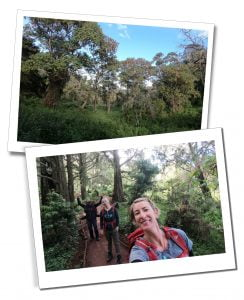 SWWW and Brigitte hiking, Day 2 in the Forest, Mount Kilimanjaro