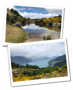 Views of the lake & surrounding countryside during the Queenstown Hike, New Zealand