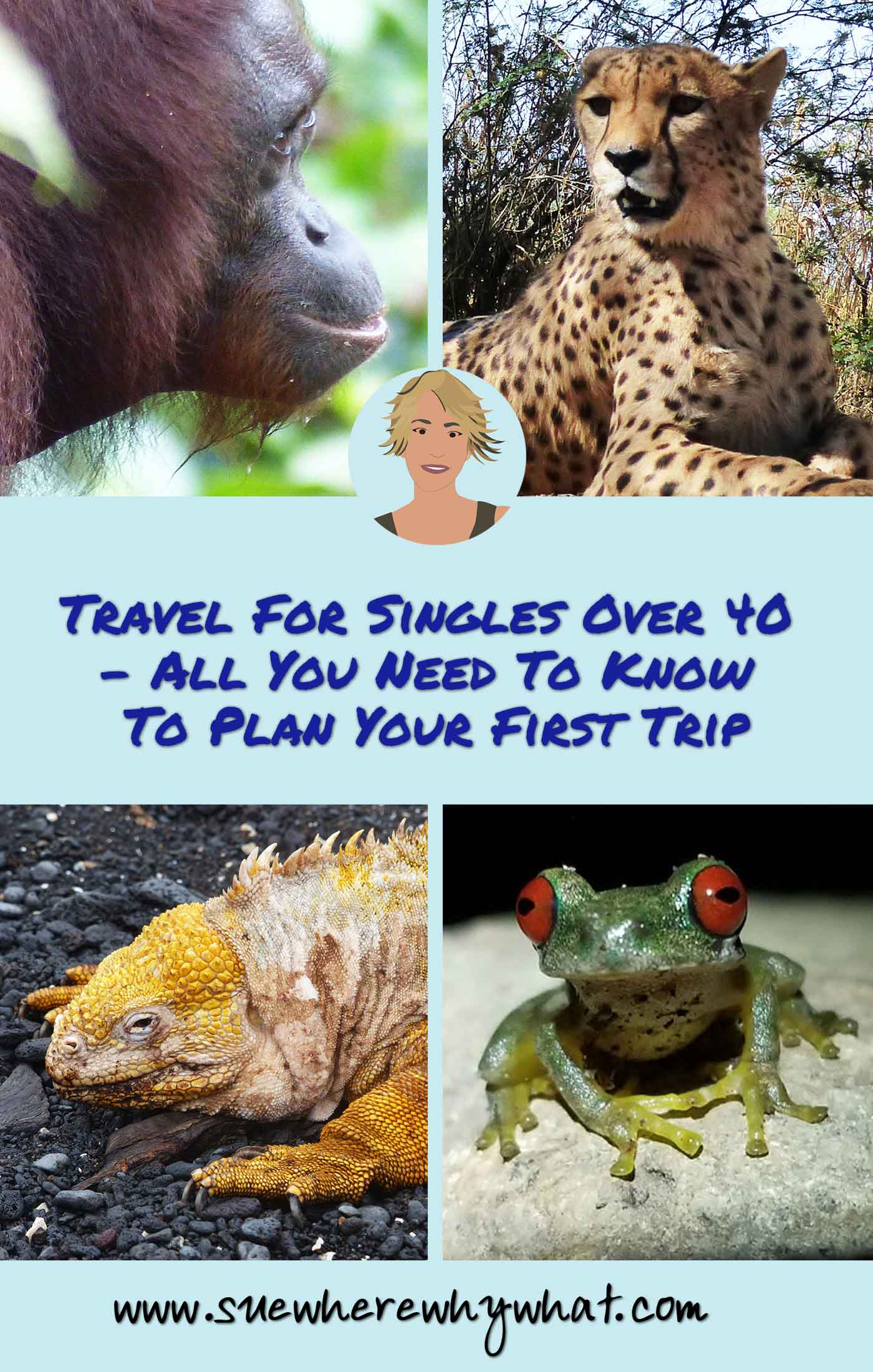 Travel For Singles Over 40 – All You Need To Know To Plan Your First Trip