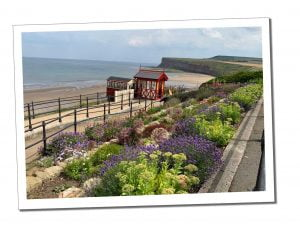 Kirbymoorside Beach - How to Choose A Holiday Let