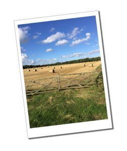 Kirbymoorside Hay bails - How to Choose A Holiday Let