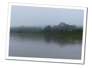 River Amazon in cloud, 10 Essential Things to Know before Visiting the Amazon in Peru