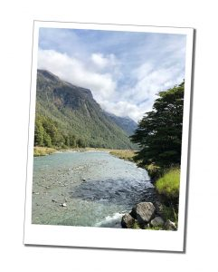 Te Anau to Milford Sound Road Trip – Everything you need to know to plan your perfect visit