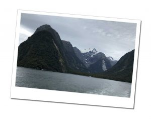 xEverything you need to know before Visiting Milford Sound
