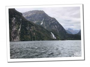 Milford Sound - Everything you need to know before Visiting Milford Sound